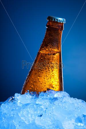 Бутылка пива во льду