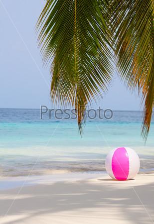 Фотография на тему Мяч на пляже под пальмой