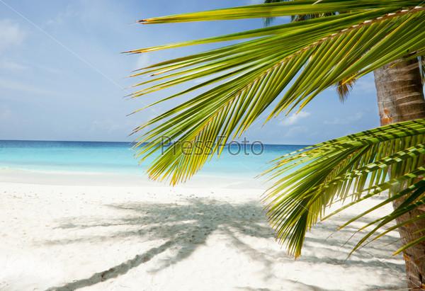 Пляж, Мальдивы