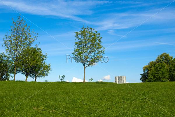 Фотография на тему Примроуз Хилл, Лондон
