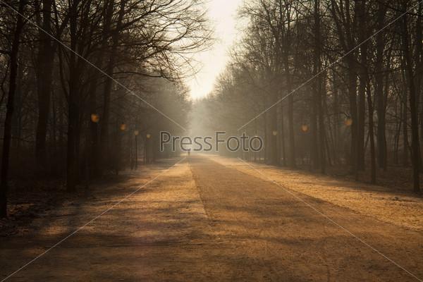 Утро в Берлине в парке