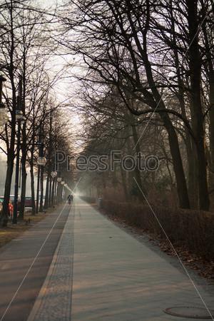 Фотография на тему Пешеходная дорожка вдоль парка
