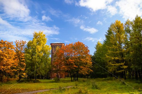 Старая башня в парке