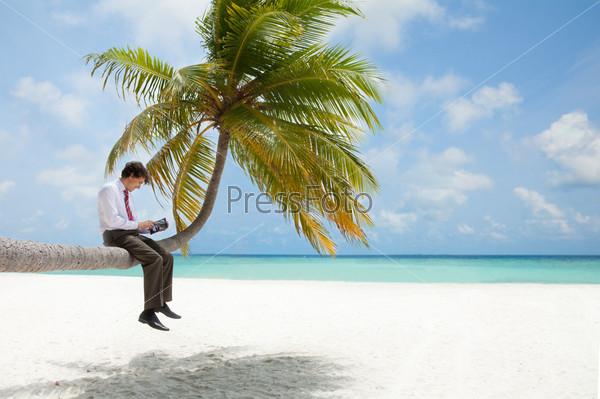 Бизнесмен, сидящий на пальме