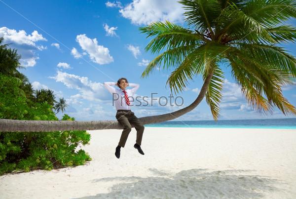 Фотография на тему Бизнесмен, сидящий на пальме