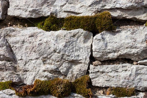 Старая каменная стена с мхом и лишайником