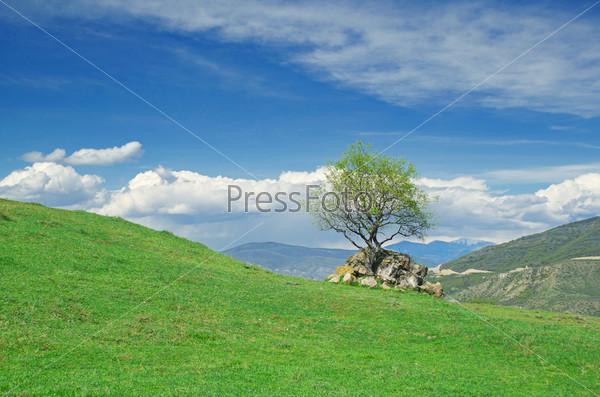 Зеленые холмы под голубым небом