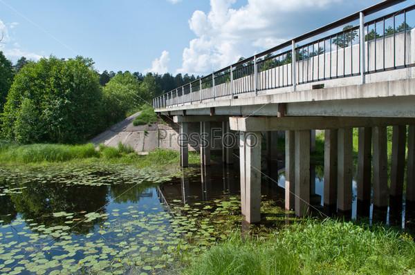 Фотография на тему Мост через заросшую реку