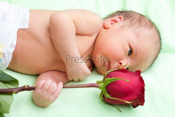 Новорожденный держит розу