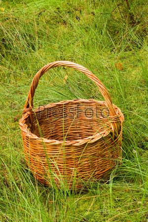 Фотография на тему Плетенная корзина в высокой траве