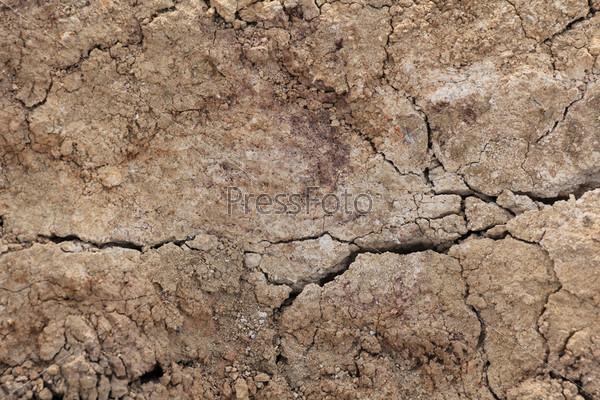 Текстура сухой почвы