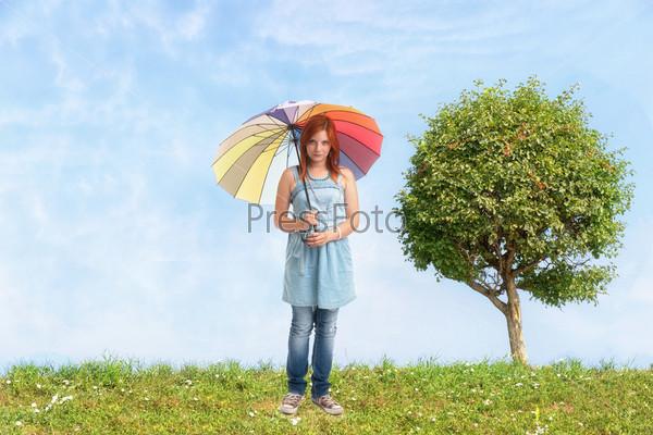 Фотография на тему Одинокое дерево, голубое небо и зеленая трава