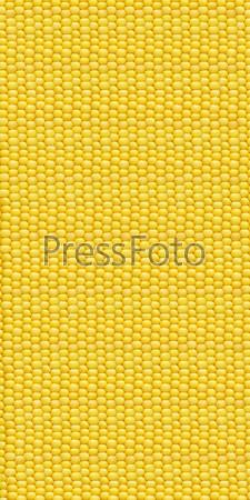 Фотография на тему Коллаж - желтая кукуруза