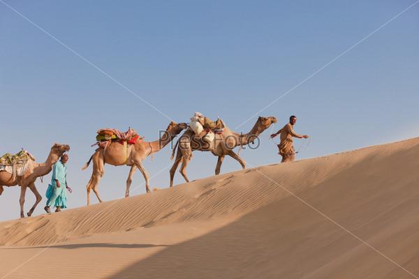 Караван с бедуинами и верблюдами в пустыне