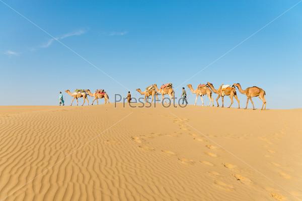 Караван в песчаных пустынных дюнах