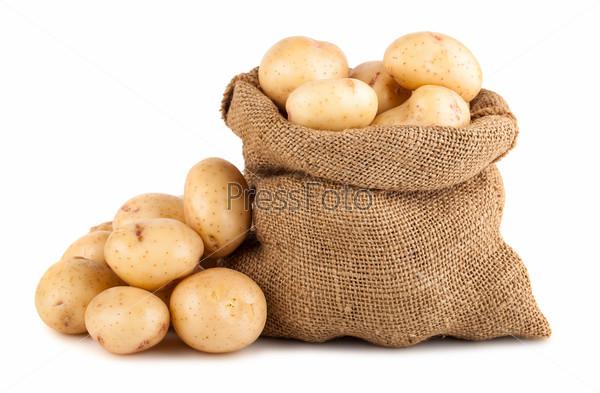 Спелый картофель в мешке