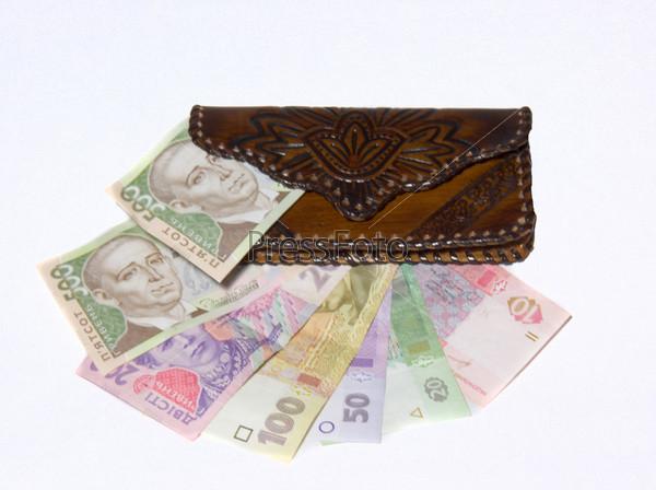 Женский кошелек и банкноты Украины