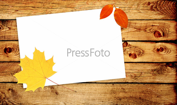 Осеннее сообщение