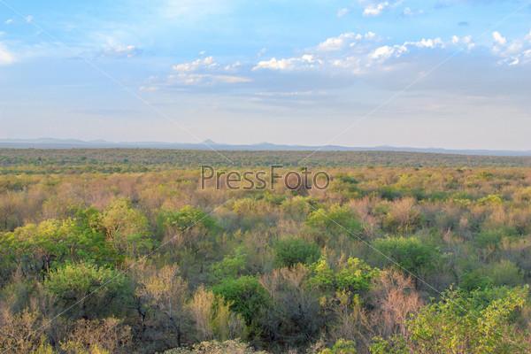 Ландшафт Южной Африки, парк Крюгера
