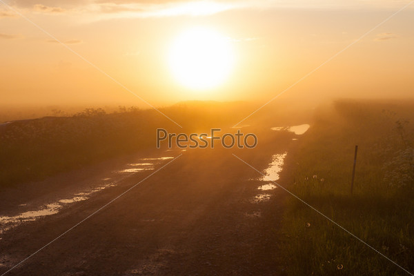 Фотография на тему Туманная сельская дорога в поле
