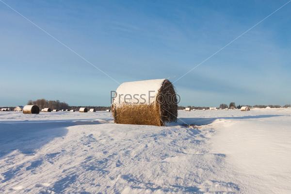Фотография на тему Тюки сена в снегу на поле
