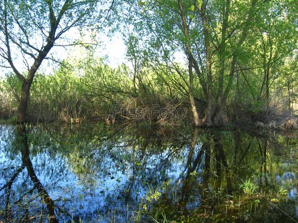 Фотография на тему Наводнение на реке весной