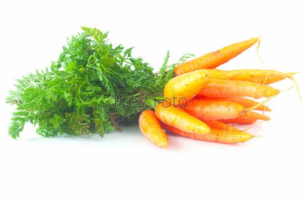 Пучок моркови с зелеными листьями, изолированный на белом фоне