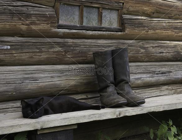 Черная кошка и кирзовые сапоги