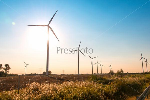 Ветряные мельницы в яркий летний день