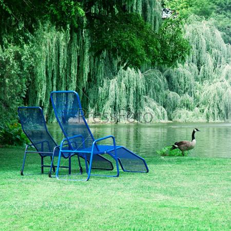 Парк с живописным озером и зоной отдыха