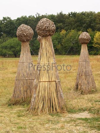 Фотография на тему Снопы сена на поле