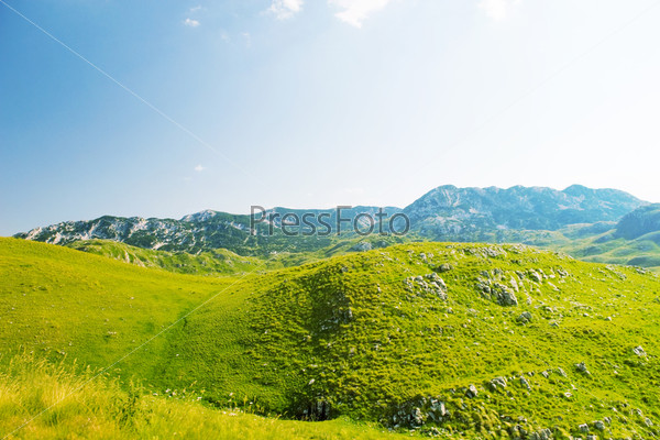 Ущелье национального парка Дурмитор в Черногории