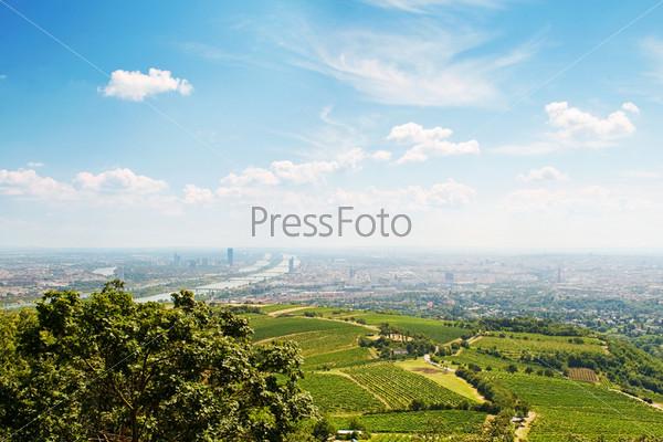Фотография на тему Вид на Вену из Венского леса