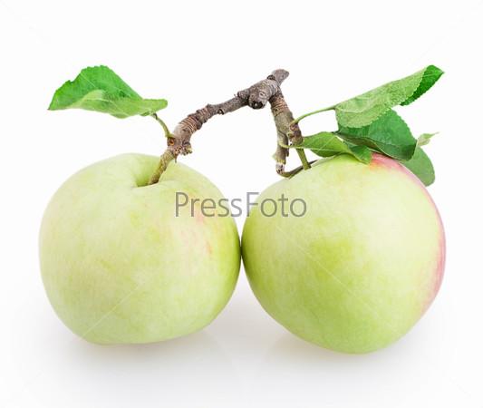 Фотография на тему Два яблока