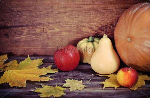Фотография на тему Осенние листья, яблоки и тыквы