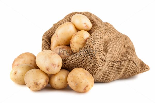 Фотография на тему Спелый картофель в мешке