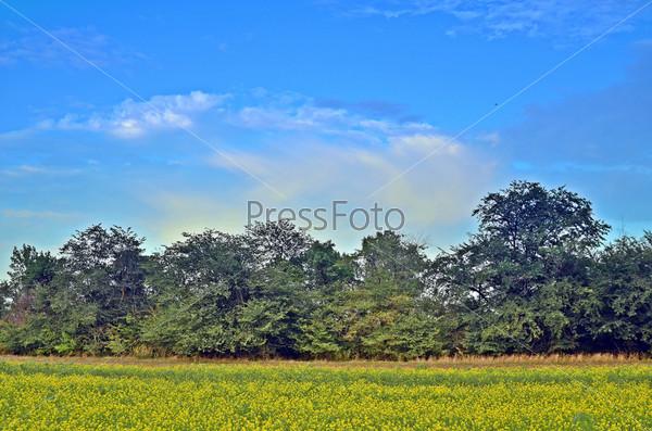 Фотография на тему Красивый пейзаж