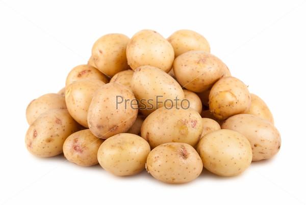 Большая куча спелого картофеля