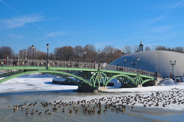 Зима, мост и утки