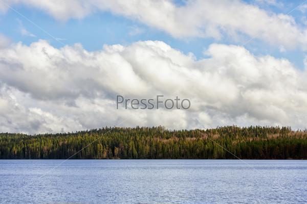 Тихое лесное озеро