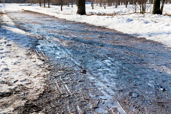 Фотография на тему Скользкая дорога в лесу ранней весной