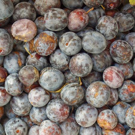 Фотография на тему Чернослив - здоровая вегетарианская еда - фон