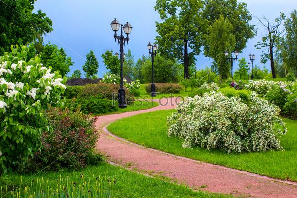 Фотография на тему В парке после дождя