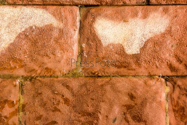 Фотография на тему Текстура красного кирпича