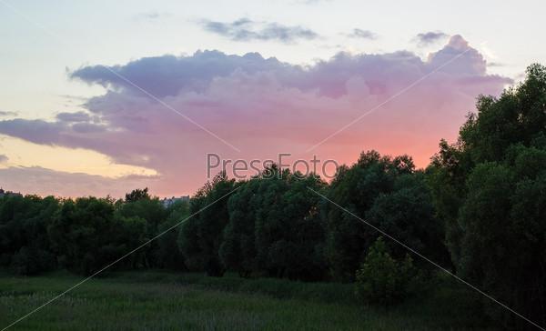 Темный лес и темное облако