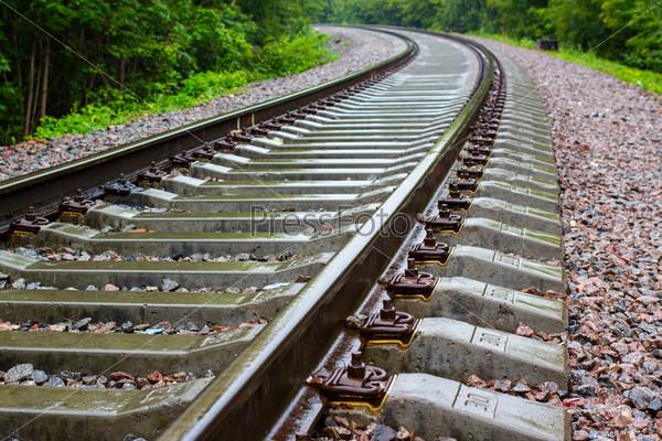 Железнодорожный путь в зеленом лесу