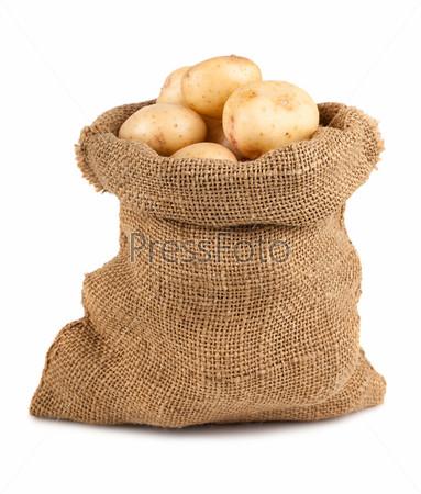 Фотография на тему Спелый картофель в холщовом мешке