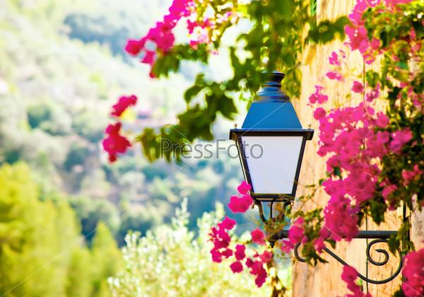 Уличный фонарь с цветами