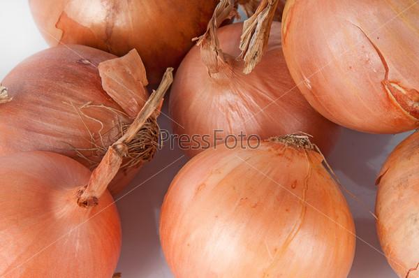 Несколько различных луковиц
