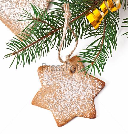 Домашнее рождественское печенье, посыпанное сахарной пудрой
